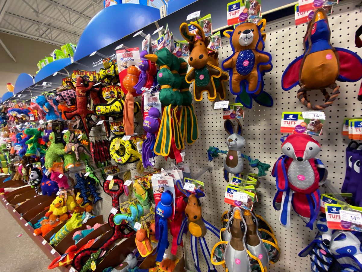 Pet Toys for Holidays